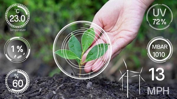 数字化助力乡村振兴——县域数字生态创新趋势展望